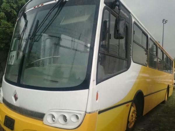 Autobús transporte escolar - GO Transportes