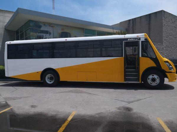 GO Transportes Autobus Escolar
